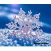 Сценарий новогоднего утренника «Приключения на новогоднем балу Снеженикой»