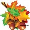 Сценарий праздника «Осенняя сказка»