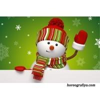 Игры со Снеговиком.