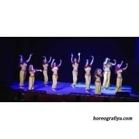 """""""Обзорная статья о танцах в стиле болливуд"""""""