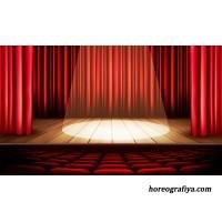 Методический доклад «Сцена и её возможности»
