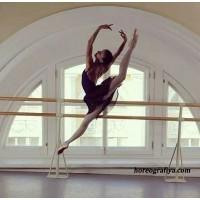 Методическая разработка «Система упражнений, направленных на выработку прыжка и устойчивости»